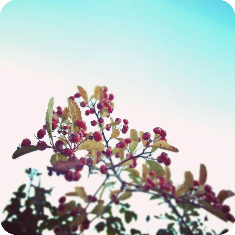Instagramcapture_cb878cc2_180e_44f2_862b_6811b38af340