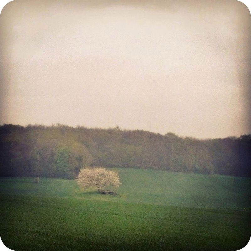 Instagramcapture_de78a549_b320_4ff3_8bc2_8f68b2fbb315