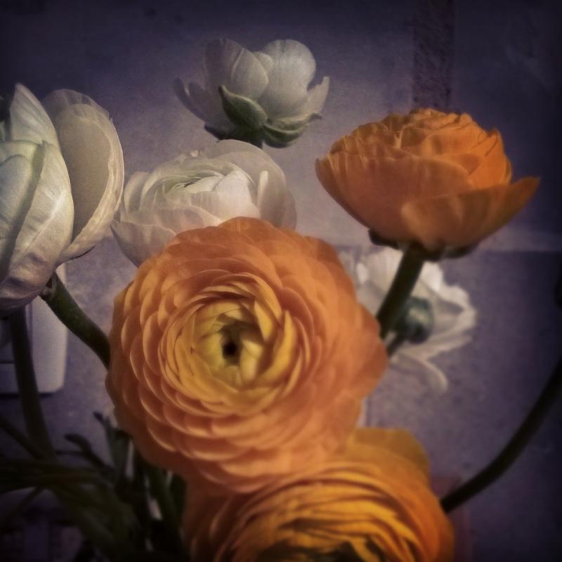 InstagramCapture_7ed30e4b-18a8-4aa8-9415-17d99d57e9f4