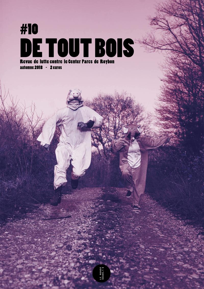 Detoutbois9